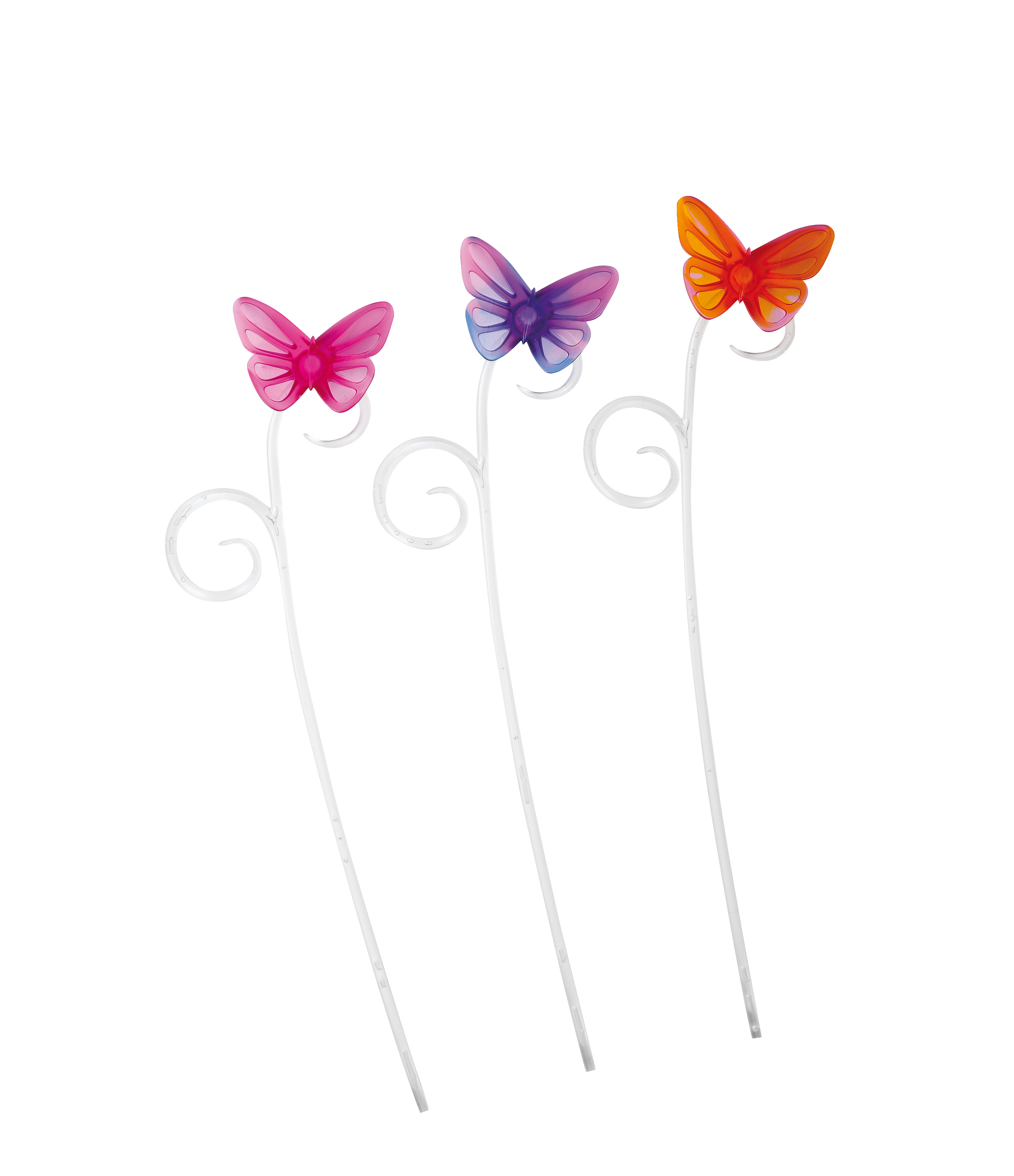 Zapich orch. 085/06 Butterfly pink